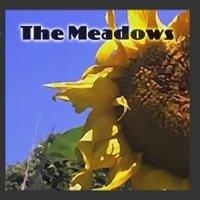 The_meadows