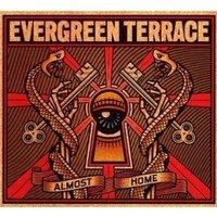 Evergreen_terrace