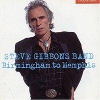 Steve_gibbons_band