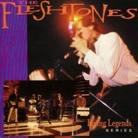 Fleshtones_living_legend_series