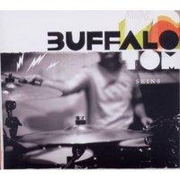 Buffalo_tom
